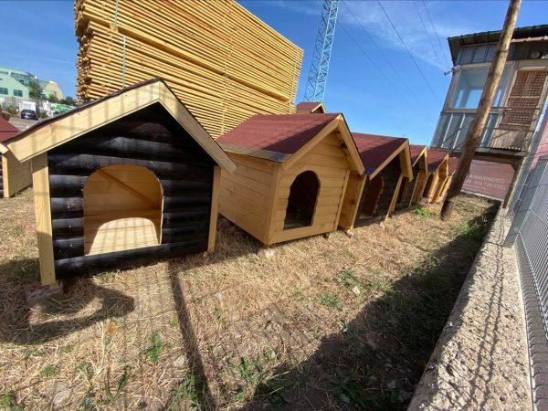 Кучешки колиби